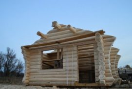 Бревенчатый дом, построенный способом простейшая чаша