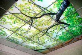 Витражный потолок с рисунком